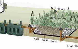 PKA_ELSA-Pflanzenkläranlagen Aufbau